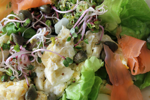 anxiety diet, salmon egg and sprout salad