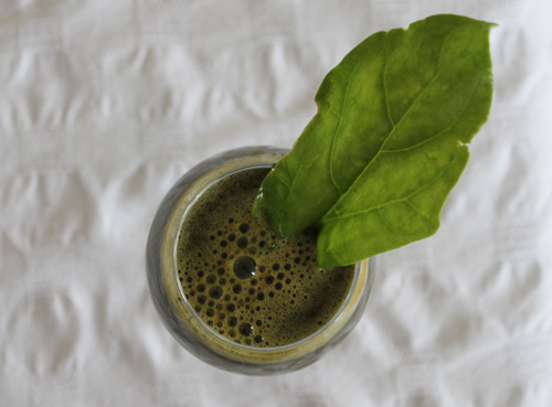 green juice fast, juice fasting, spinach juice