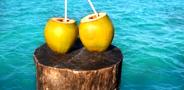 21-days juice fasting, green juice, body detox, raw food diet, juice fasting