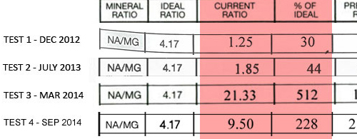 sodium-magnesium mineral ratio of hair mineral analysis indicates the oxidation rate, Na-Mg