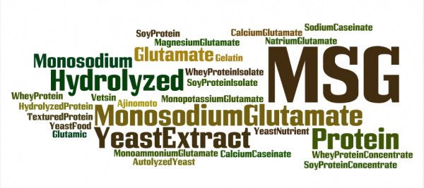 msg, hidden names, monosodium glutamate