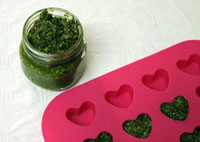 pesto sauce recipe, raw food