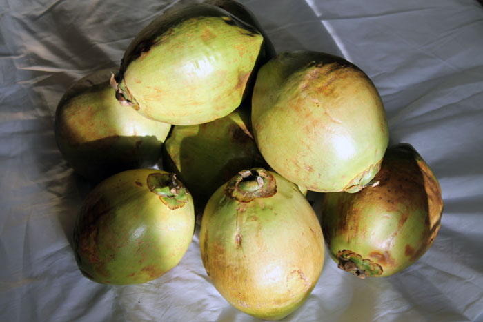 raw young coconuts, raw food challenge
