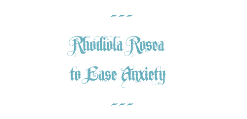 rhodiola rosea, to ease anxiety